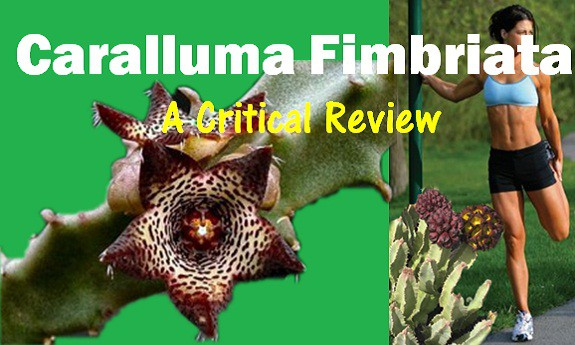 Caralluma Fimbriata For Weight Loss