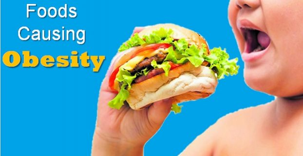 Foods Causing Obesity