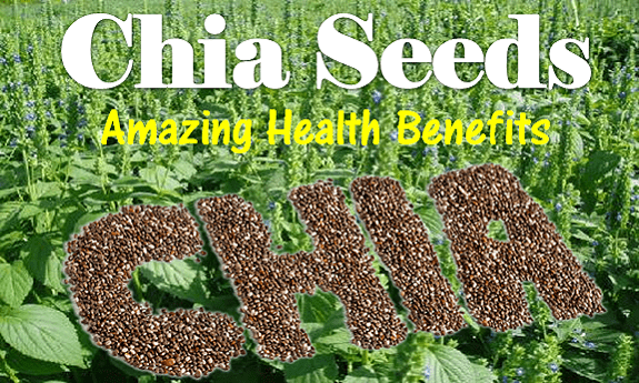 Chia Seeds Health Benefits