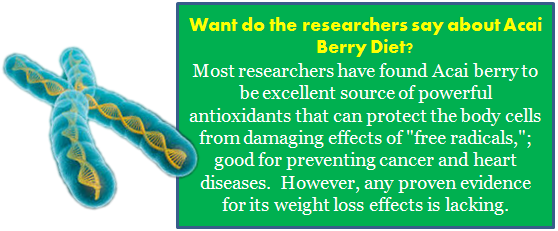 Researcher's Opinion On Acai Berry Diet