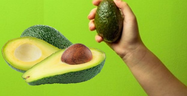 Woman Holding Avocado In Hand