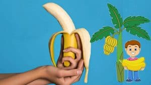 Eating Banana For Good Health