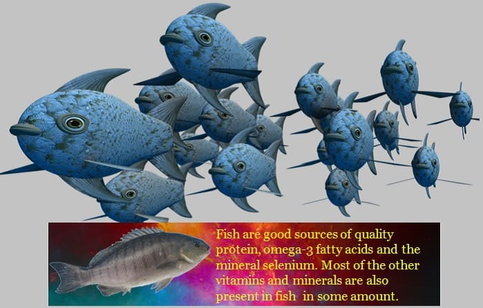 Fish Is Rich In Nutrients
