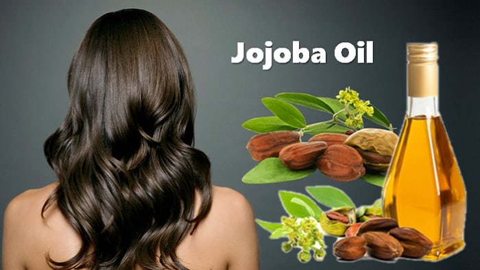 Jojoba Oil Hair Treatment