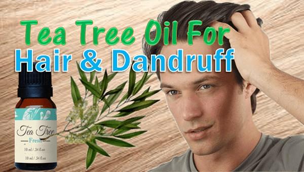 Tea-Tree-Oil-For-Hair-And-Dandruff