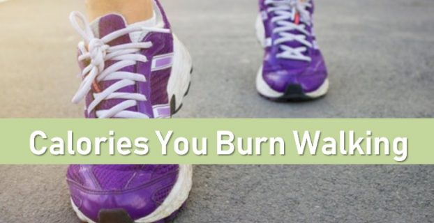 Calories You Burn Walking
