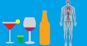 Alcohol In Your Body