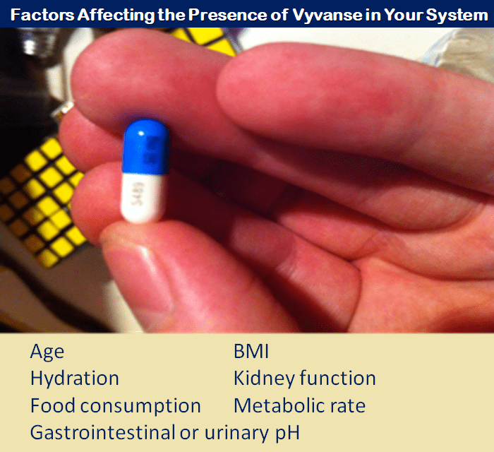 Vyvanse In Your System