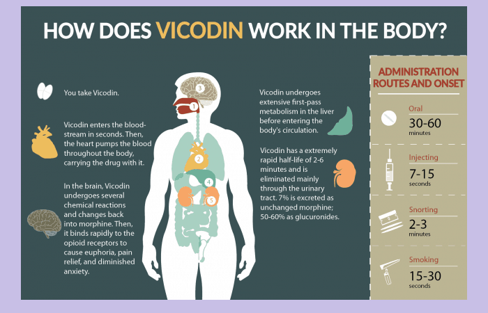 How Does Vicodin Work