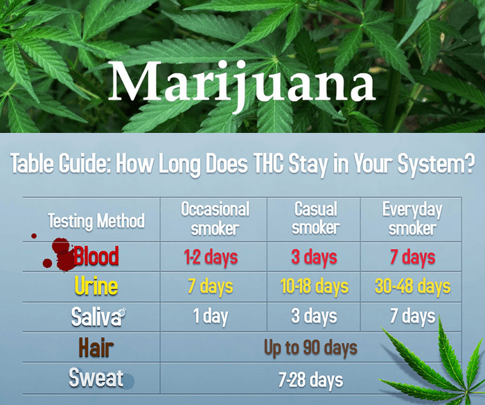 Marijuana Drugs Test Chart