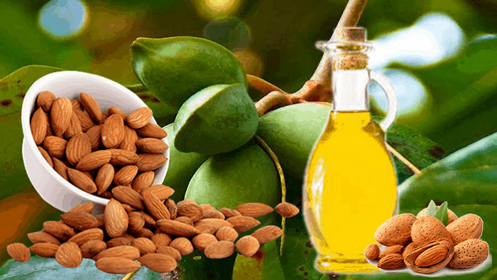 Almond Oil As Substitute for Coconut Oil