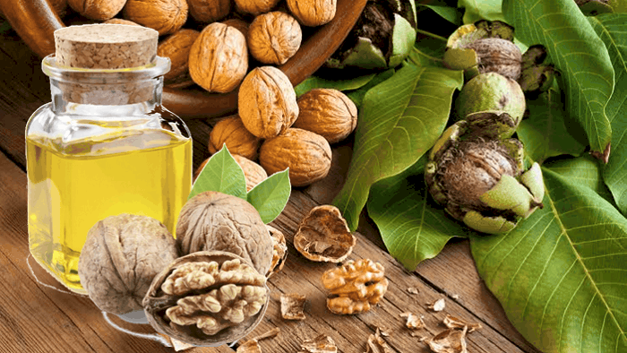 Walnut Oil As Substitute For Coconut Oil