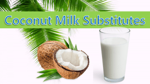 Coconut Milk Substitute