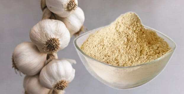 Garlic Powder Substitutes