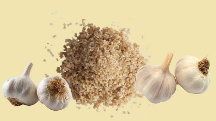 garlic salt vs garlic powder