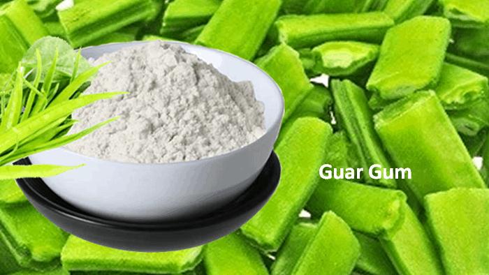 Gaur Gum