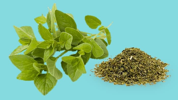 Oregano Substitute