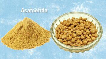 asafoetida substitutes