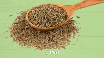 substitutes for cumin
