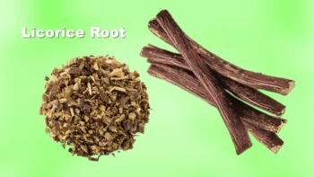licorice root substitute