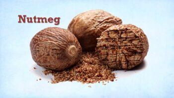 substitution for nutmeg