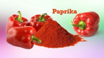 paprika substitutes