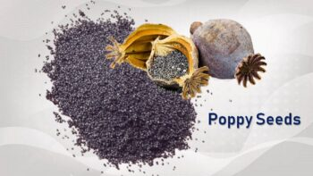 poppy seed substitute