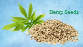 substitute for hemp seeds