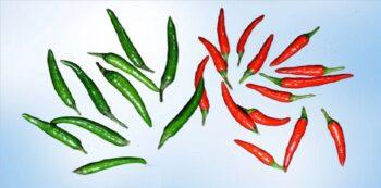 thai chili substitute