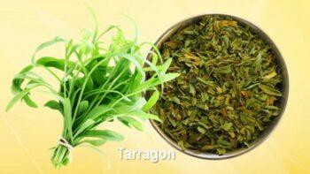 substitute for tarragon