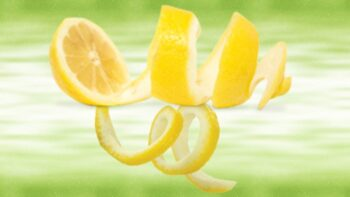 lemon peel substitute