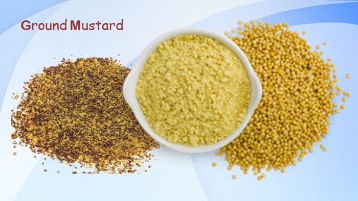 substitute for powdered mustard