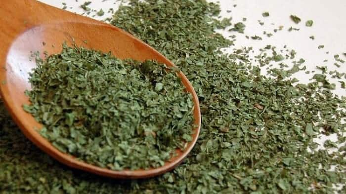 Drying Coriander Leaves